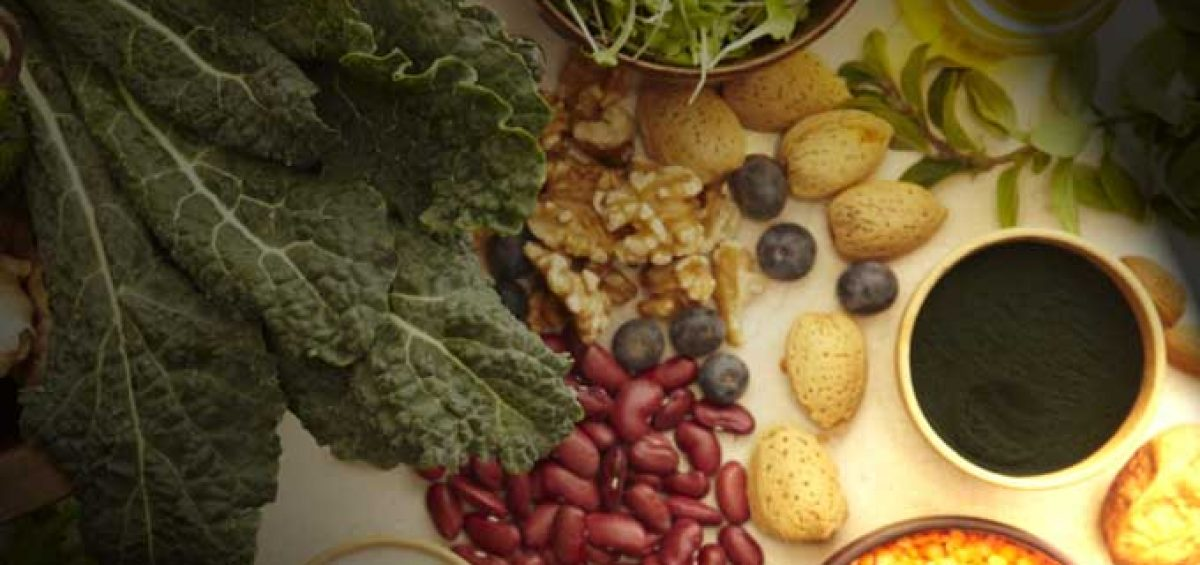 Alimentação Ayurveda palestra Faculdade Senac