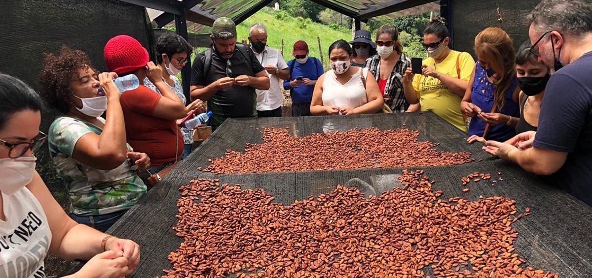 A turma da especialização em Confeitaria conheceu de perto os processos da produção do chocolate